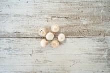 Organic Button Mushroom