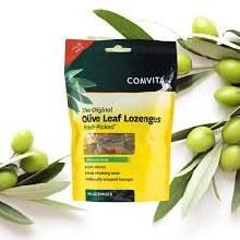 Olive Leaf w/ Manuka Honey Lozenges