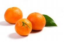 Mandarin Daisy 1kg