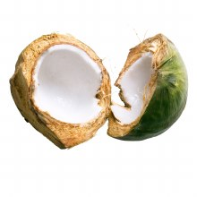 Coconuts Young Each