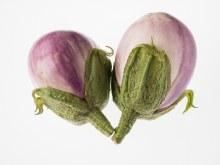 Eggplant Rosa Bianca Each