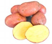 Potato Pontiac 1kg