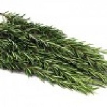 Herb Rosemary Bunch