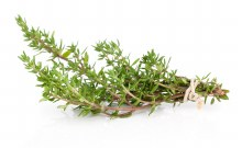 Herb Thyme Bunch