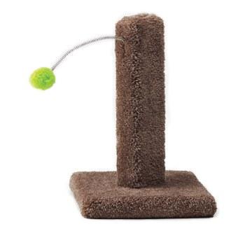 Kitty Cactus W/Pom Pom 16 inch