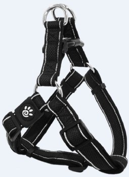 1 X 20-28 Athletica Harness Black