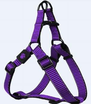 1 X 26-39 Martini Harness Purple