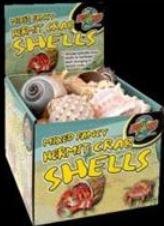 Bulk Fancy Shells 24 Pc Disp