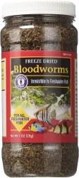 Freeze Dried Bloodworms 1oz