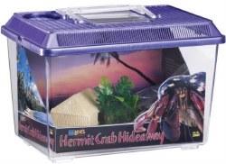 Hermit Crab Hideaway Kit