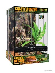 Crested Gecko Kit Small