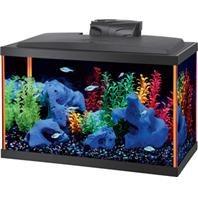 Aqueon Neoglow Led Aquarium Kit Orange 10 Gallon
