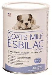 Goat Milk Powder 12oz