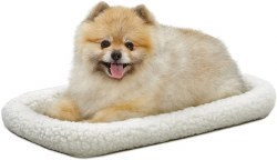 Quiet Time Pet Bed 22 x 13""