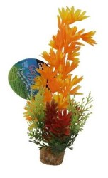 ColorBurst Florals Lg Brush