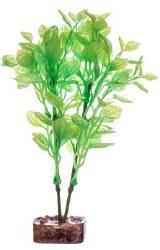 Glofish Grn/Yellow Plant Md