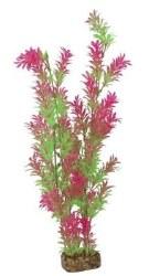 Glofish Plant Grn/Pnk XL