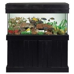 Cabinet Stand Blk 20L/29 Gal