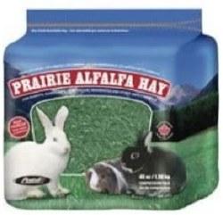 Prairie Alfalfa Hay 48oz