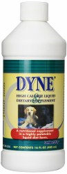 Dyne High Calorie Sup 16oz