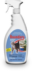 Boundary Cat Pump 22 oz
