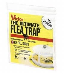 Universal Flea Trap Refill 3pk