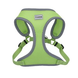 ReflectivHarness 20-30 In Lime