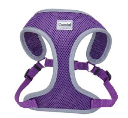 ReflectivHarness 20-30 In Purp