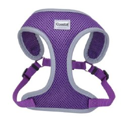 ReflectivHarness 28-36 In Purp