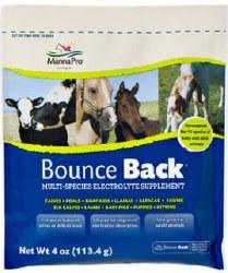 Bounce Back 4oz