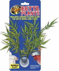 Bamboo Betta Plant