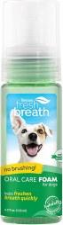 Fresh Breath Mint Foam