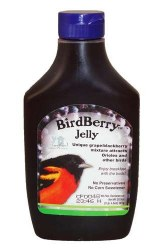 Jelly/Jam Oriole Feeder