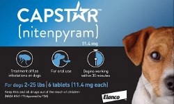 Cap Star Oral Flea Tic 2-25lb