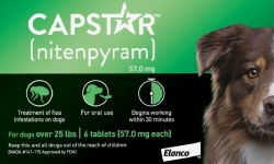 Cap Star Oral Flea Tic 25lb