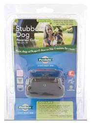In-Ground Collar Stubborn Dog