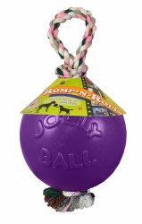 Romp N Roll Ball Purple 8 Inch