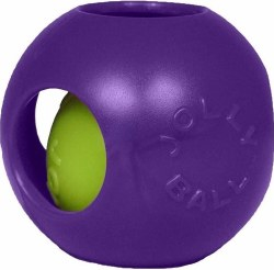 Teaser Ball 6 Inch Purple