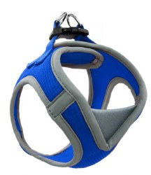 1 X 20-28 Athletica Harness Blue