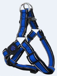 Athletica AirStep Harness Blue Large