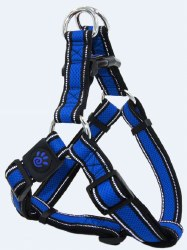 Athletica AirStep Harness Blue Xtra Large