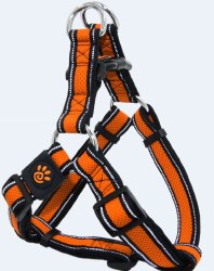 Athletica AirStep Harness Orange Large
