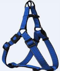 3/4x21-30 Martini Harness Blu