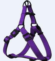 3/4 X 21-30 Martini Harness Purple