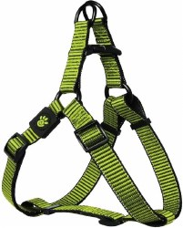 3/4x21-30 Martini Harness Lim