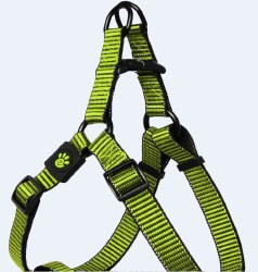 1x26-39 Martini Harness Lime