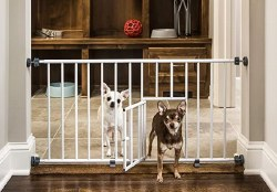 Carlson Mini Steel Gate With Door 29-38 Inches Wide 18 Inches Tall