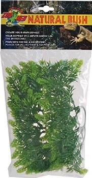 Plant Malaysian Fern SM Green