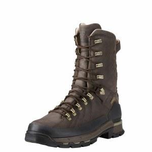 """Ariat Catalyst Defiant 10"""" Gore-tex Boots"""