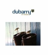Dubarry Short Boot Tree